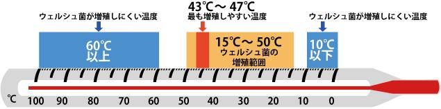 ウェルシュ菌の対応温度