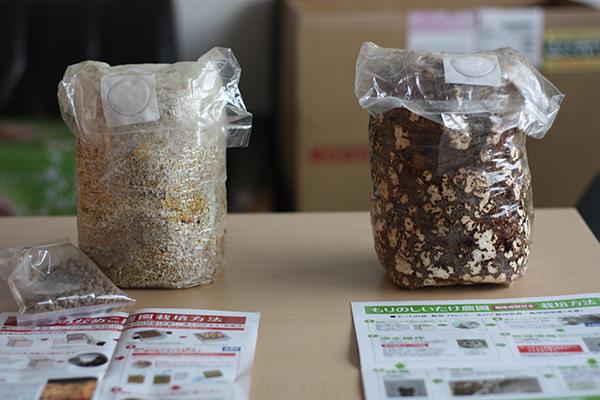 椎茸とナメコの菌床